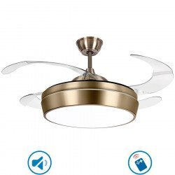 Ceiling fan Tulyp brass 107 cm retractable transparent blades with remote control, extra powerful light point