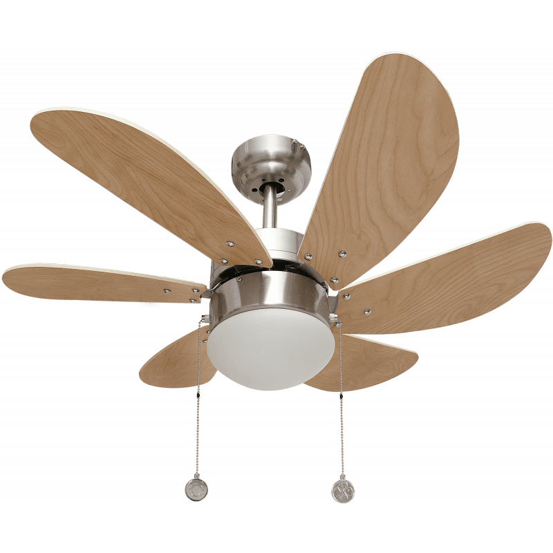 Ceiling fan Colore with lamp beech blades.