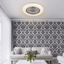 Hybrid ceiling or wall fan, with powerful light point