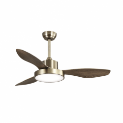 Wind Oak - AC ceiling fan with LED light and remote control, 120 cm